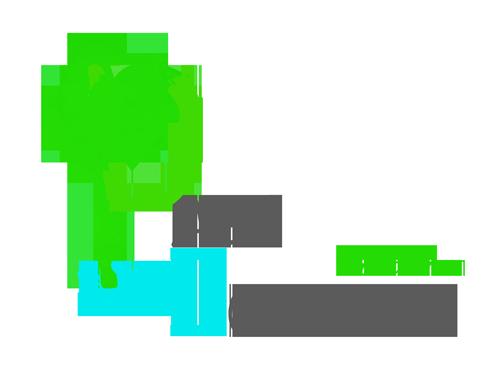 Palmcoaching Logo